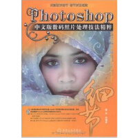 Photoshop 中文版数码照片处理技法精粹 附光盘