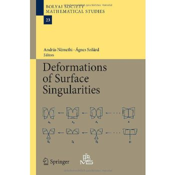 【预订】Deformations of Surface Singularities 9783642391309 美国库房发货,通常付款后3-5周到货!