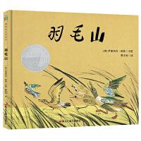 森林鱼童书・凯迪克大奖绘本:羽毛山