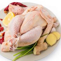 【章贡馆】赣南山区散养 白耳黄鸡(1.8-2.2斤)农家土鸡走地鸡现杀顺丰直发
