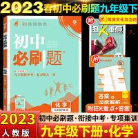 2020春必刷题九年级下册化学人教版练习册题库试卷
