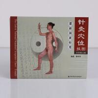 针灸穴位挂图 女性真人版 女性针灸疗法穴位图解 正版