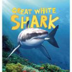 【预订】Great White Shark 9781609923709