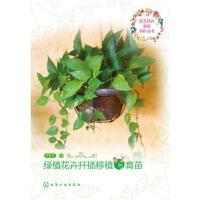 园艺花卉栽培养护丛书--绿植花卉扦插移植与育苗 徐帮学 化学工业出版社 9787122288974