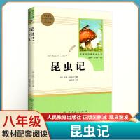 昆虫记 人民教育出版社 八年级上册部编版同步阅读 名著阅读课程化丛书 亨利・法布尔著统编语文教材配套阅读