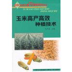 玉米高产高效种植技术