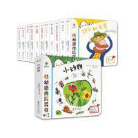 正版低幼感统玩具书(全11册 套盒也带翻翻功能哟)触摸翻翻玩具书 0-3岁亲密互动玩具书 儿童绘本故事轮子和车 小老虎玩