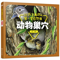 让孩子着迷的第一堂自然课――动物巢穴