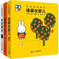 米菲的滑板书系列全3册 0-2-3-4周岁儿童绘本亲子早教推拉书奇妙洞洞书婴儿宝宝启蒙认知玩具书籍谁藏在那儿+看到什么