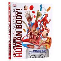 DK百科全书 人体图解知识 英文原版Knowledge Encyclopedia Human Body! 3D插图人体指