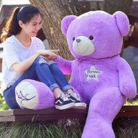 薰衣草小熊公仔毛绒玩具熊玩偶抱抱熊布娃娃送女生闺蜜礼物 薰衣草色