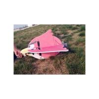 航模 固定翼 电动遥控飞机 腰推 愤怒的小鸟 9mm EPP 练习机 抖音