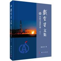 戴金星文集――天然气地球化学(卷三)