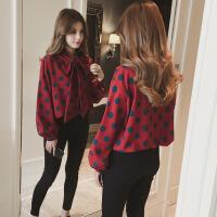 春装新款韩版蝴蝶结系带中长款波点雪纺衬衫上衣女装长袖打底衬衣 红色 均码