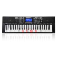 ?新韵多功能电子琴初学者入门专业幼师教学61钢琴键儿童家用?