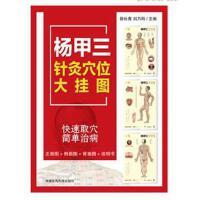 杨甲三针灸穴位大挂图 郭长青 刘乃刚 9787521402179