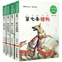 沈石溪动物小说全集4册注音版全套正版包邮 的书全系列 第七条猎狗 *飞渡正版书免邮 再被狐狸骗一次