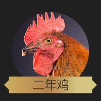 【酷菜】正宗北京散养油鸡 有机鸡 (鸡龄2年)
