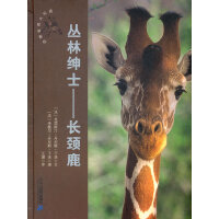 丛林绅士--长颈鹿 动物世界大写真