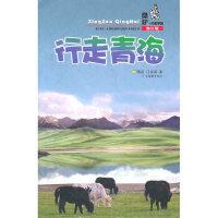 行走青海 陈皮,江泳涛 广东旅游出版社 9787807662013