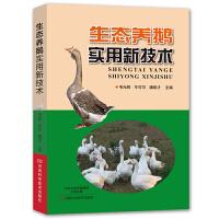 生态养鹅实用新技术