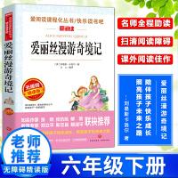 爱丽丝漫游奇境记 语文新课标青少版童话故事小学生版四五六年级书籍正版