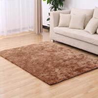 韩国丝地毯客厅茶几地毯卧室满铺床边毯