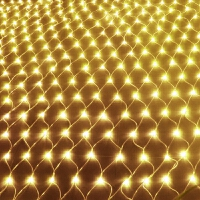 LED网灯LED彩灯闪灯串灯渔网灯圣诞防水灯串装饰窗帘灯网状彩灯