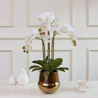 手感蝴蝶兰仿真花套装金花瓶客厅装饰假花摆件盆栽北欧