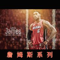 【詹姆斯】MVP运动篮球拼图1000片 木质木制减压拼板