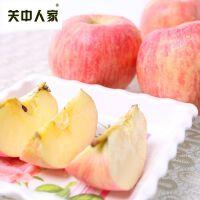 【陕西乾县馆】关中人家 陕西洛川红富士苹果脆甜多汁5斤新鲜包邮