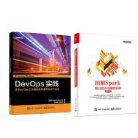 DevOps 实践 计算机网络 软件工程+图解Spark:核心技术与案例实战 开发项目管理 企业Java应用程序 执行