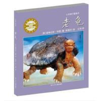 老龟心灵修行图画书硬壳精装绘本耕林4岁以上亲子阅读正版童书
