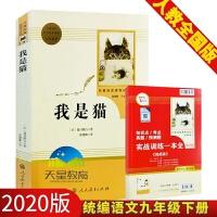 我是猫 夏目漱石 统编语文教材配套阅读九年级下 名著阅读课程丛书