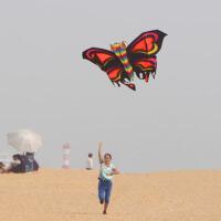 风筝前撑杆蝴蝶风筝带线轮大型风筝