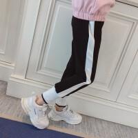 童装女童运动裤子春款新款韩版休闲裤儿童女孩宽松洋气打底裤