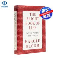 英文原版 生命中最亮眼的书 The Bright Book of Life Novels to Read and Rer
