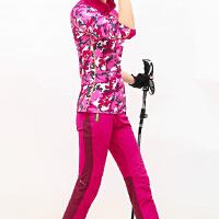 户外速干衣裤套装女透气登山运动徒步防晒立领速干衣长袖冲锋裤秋 玫红色 8805+88