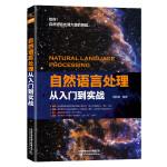 自然语言处理从入门到实战