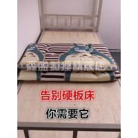 午休1.0床垫铺底软垫一米小孩神器上下床褥子幼儿家用床垫床垫190