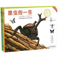 昆虫的一生 5册精装绘本日本著名绘画大师作品中国科学院昆虫学家倾力推荐 儿童科普绘本图画书昆虫知识大百科全书幼儿园书籍