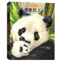 动物成长志(全4册)