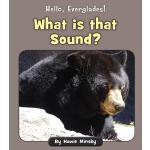 【预订】What Is That Sound?