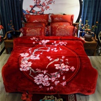 毛毯被子双层加厚云毯超柔保暖冬季结婚珊瑚绒双人床单 浅紫色 寒烟翠红【9斤 200cmx230cm