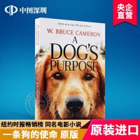 英文原版 A Dog's Purpose 一条狗的使命 全英文版同名电影小说 情感治愈系 布鲁斯 卡梅伦 国外书籍 年度
