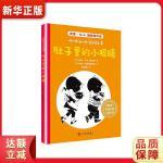国际安徒生奖儿童小说:咿咿和呀呀的故事 肚子里的小眼睛 [荷]安妮・M.G.施密特,蒋佳惠 ,[荷]菲珀・维斯顿多普