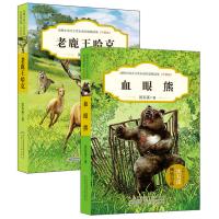 血眼熊+老鹿王哈克(升级版)全2册 沈石溪 沈石溪的书 沈石溪动物小说 6-7-10-12-15岁儿