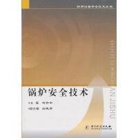 锅炉安全技术/特种设备安全技术丛书