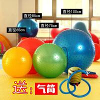 按摩球颗粒球触觉球大龙球儿童感统训练健身球加厚防爆瑜伽球