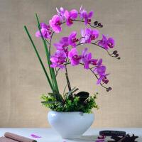 仿真花蝴蝶兰套装pu绢花装饰花家居客厅花盆花艺摆件
